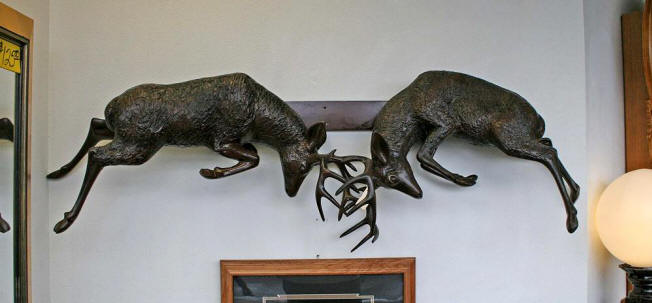 Pair of Deer Fighting for Wall